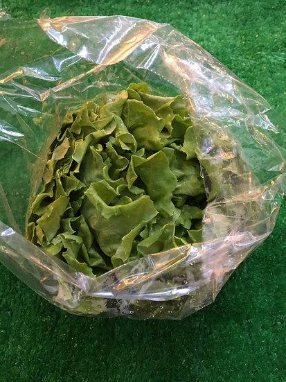 Lettuce- 69p