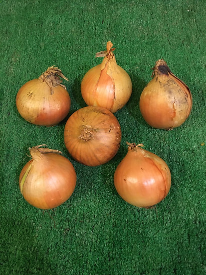 Cooking Onions (x6)-99p