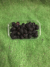 Blackberries -£1.49p