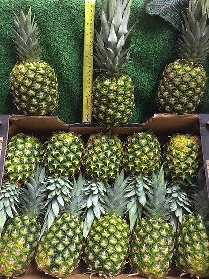Pineapple - 69p