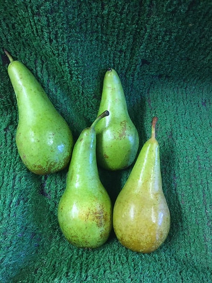 Pears (x4) £2.00