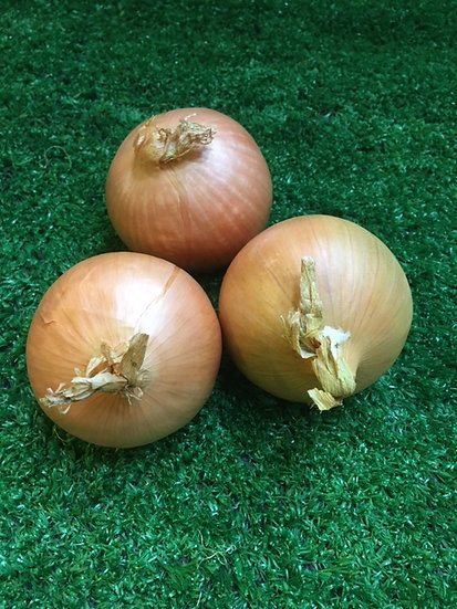 Cooking Onions (x3) - 65p