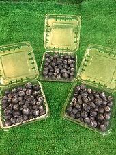 Blueberries (x3)-£2.00