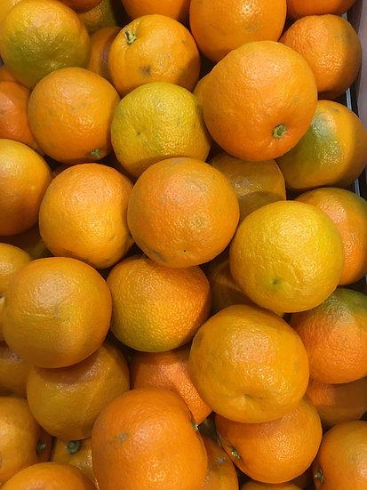 Seville Marmalade Oranges (x1kg) - £2.99