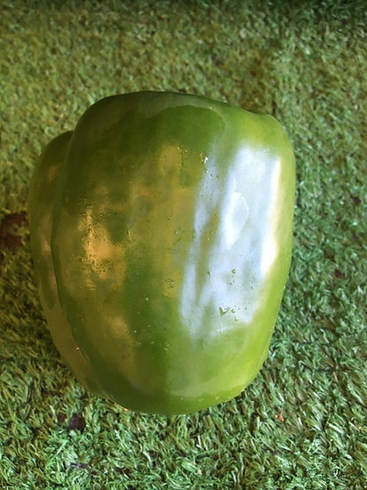 Green Pepper- 89p