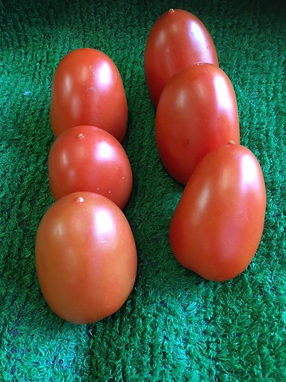 Red Egg Plum Tomatoes (x6) - £1.99