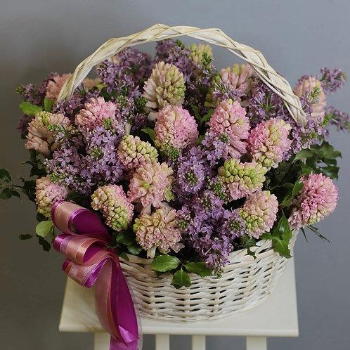 Цветочная корзина с гиациантами