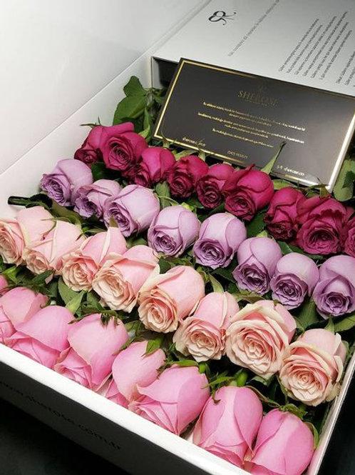 Розы в длинной коробке
