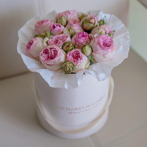 Пионовидные розы Charming Piano в шляпной коробке