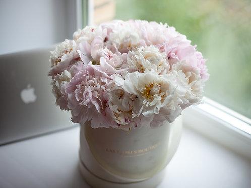 цветы в коробках фото пионы