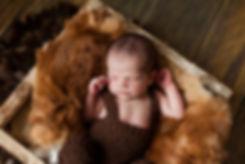 фотосессия новорожденного заказать