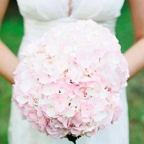 Букет невесты из бледно розовой гортензии