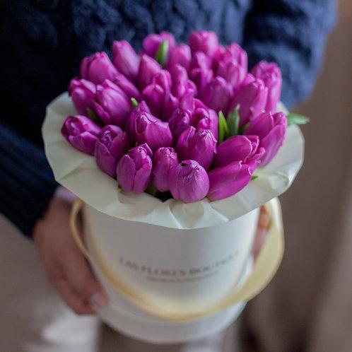 Фиолетовые тюльпаны в коробке