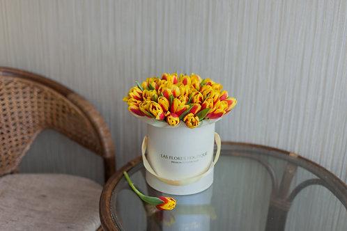 тюльпаны в коробке фото