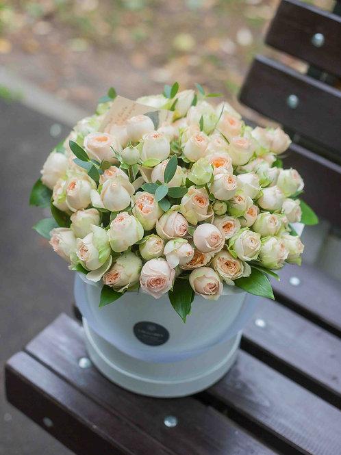 Пионовидные кустовые розы в коробке