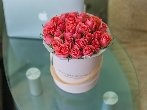 розовые розы в коробках в москве