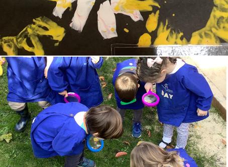 Nursery News - Fledglings