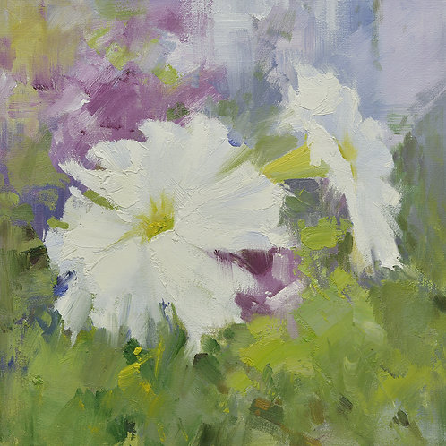 16x16 oil painting of petunia flowers white and purple 22010511