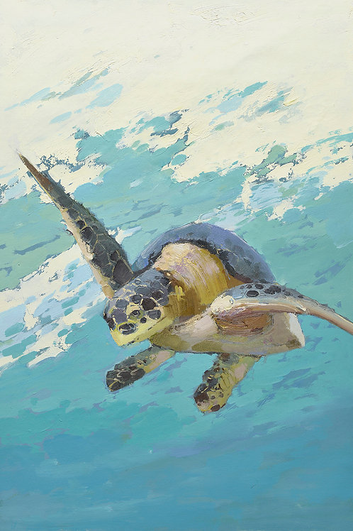 24x36 oil painting of Turtel on canvas 42071005