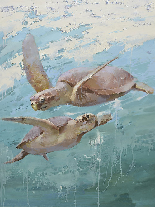 36x48 Modern Giclee on canvas of 2 sea turtles  in ocean 72071027G
