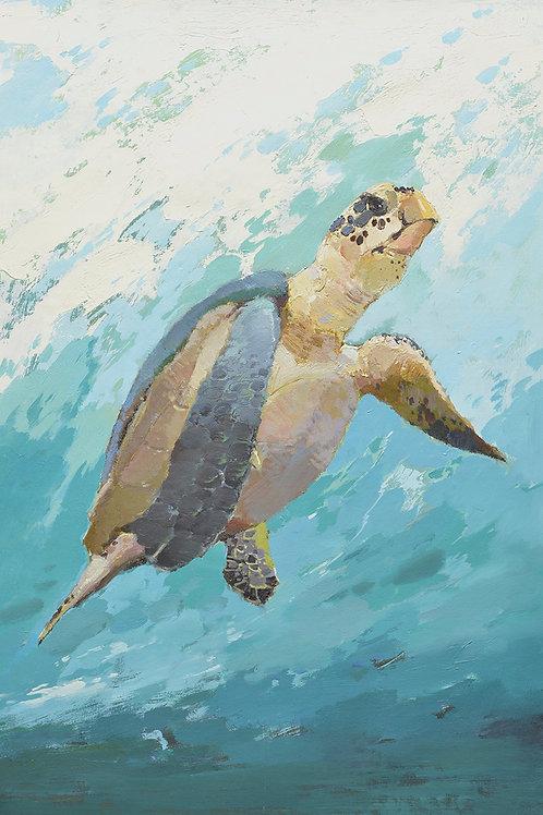 24x36 oil painting of Turtel on canvas 42071004