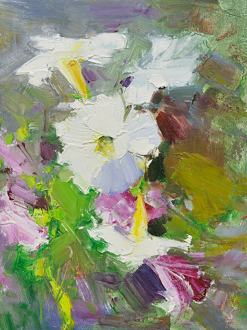 12x16 oil painting on canvas of white petunia flowers 22010536