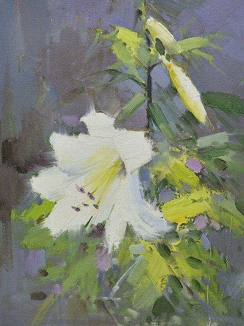 12x16 oil painting on canvas of white daylily flowers 22010520