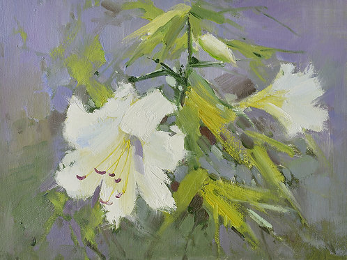 12x16 oil painting on canvas of white daylily flowers 22010521
