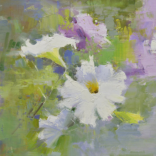 16x16 oil painting of petunia flowers white and purple 22010509
