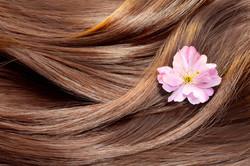 cheveux naturels 100% humains