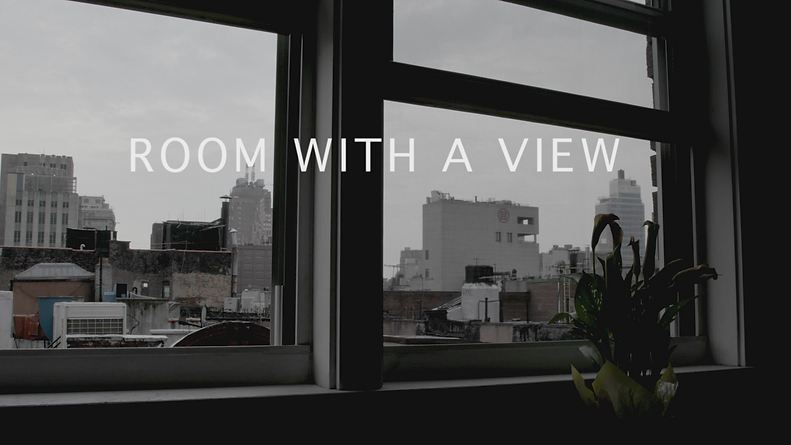 Room with a View screengrab 023.png