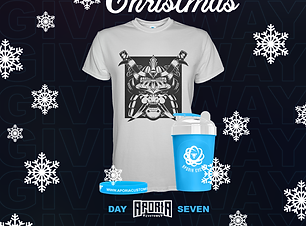 community-christmas-day-7-giveaway.png