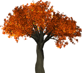 tree-1658813_640.png