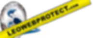 leoweb-header-logoPrint-b.png