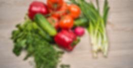 Patty Berry Austin Texas Nutrition Dietitian Certified Diabetes