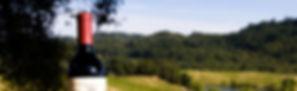 Séjours à vélo en Bourgogne - Dijon