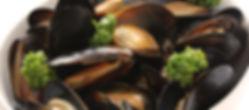 Blue Heron Mussels
