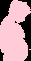 Fertility Alternatives Surrogacy Program