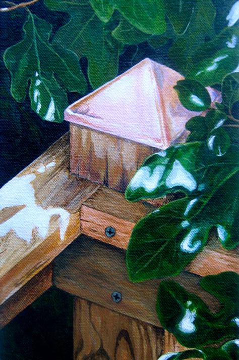 Ed's Deck (Brenda Thomas)