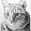 Thumbnail: Pet Portrait Commissions! (Prices Vary)