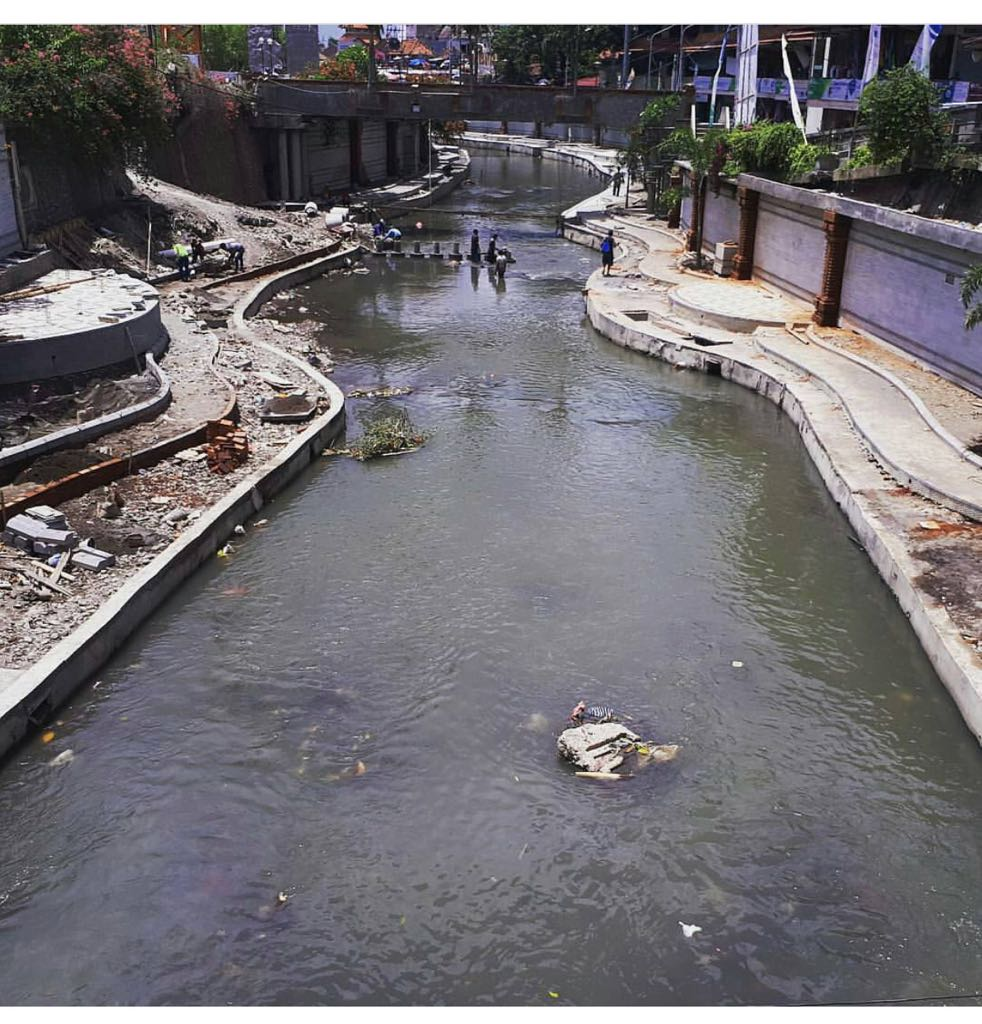 River Beautification (12)