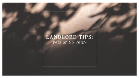 Landlord Tips: Pets or No Pets?