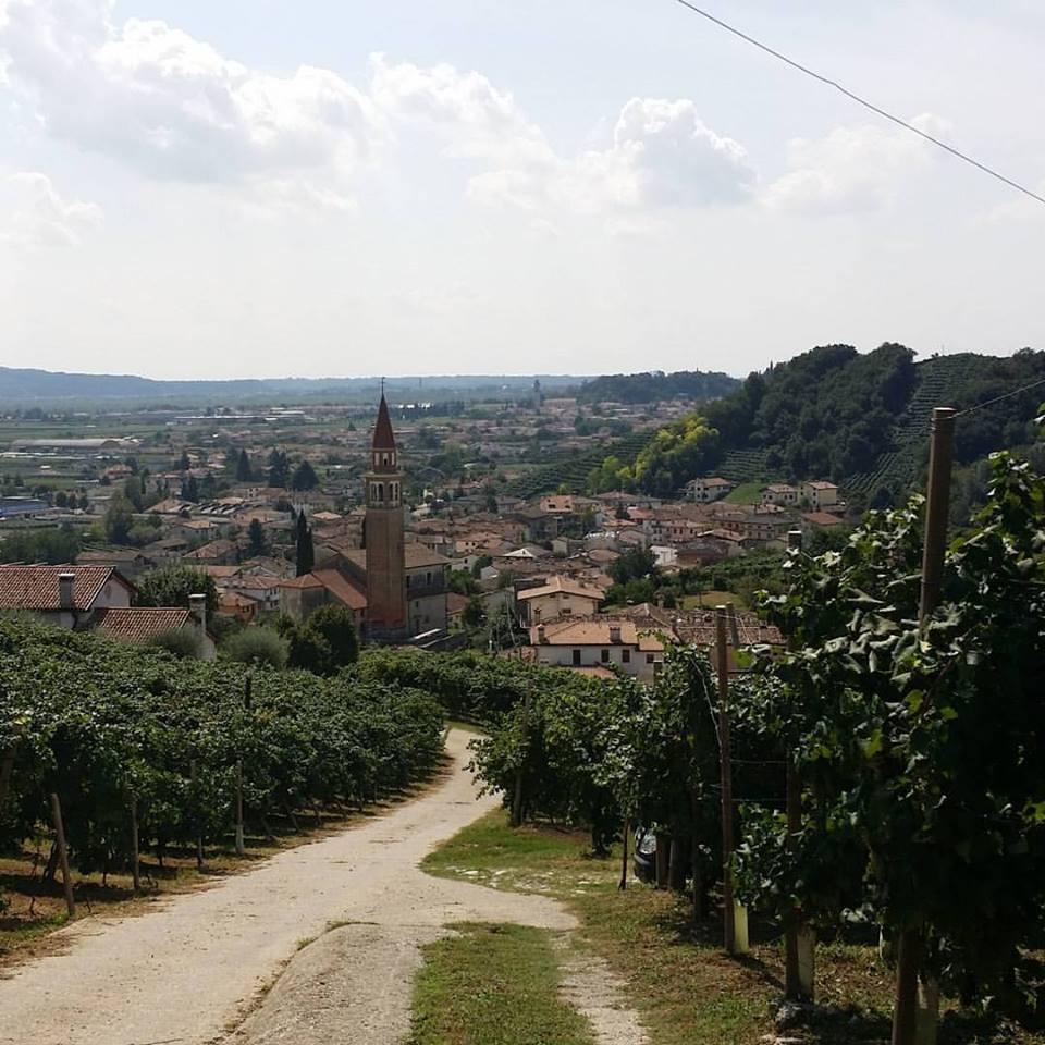 valdobbiadene, prosecco wine tour