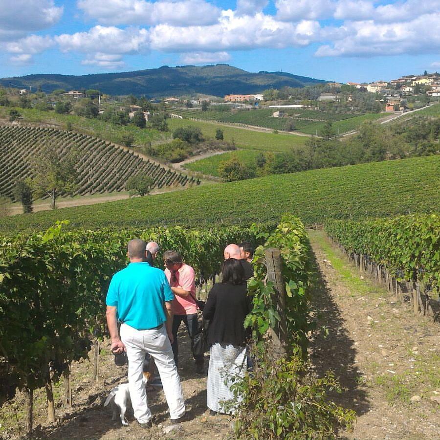 chianti classico wine tour vista radda in chianti