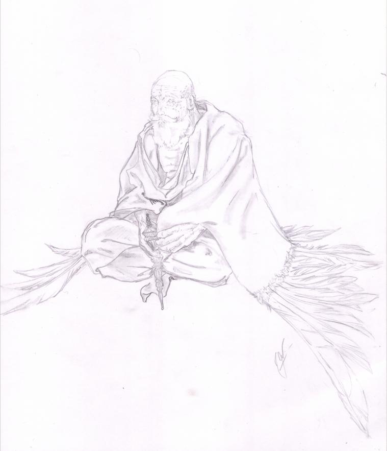Velho Garuda