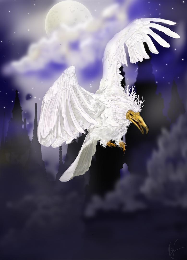Pássaro Roca - Técnica miSTA