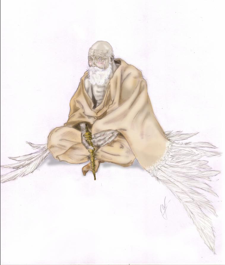 Velho Garuda - Técnica mista