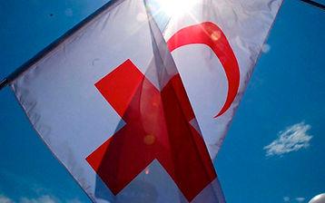 Red Cross Flags.jpg