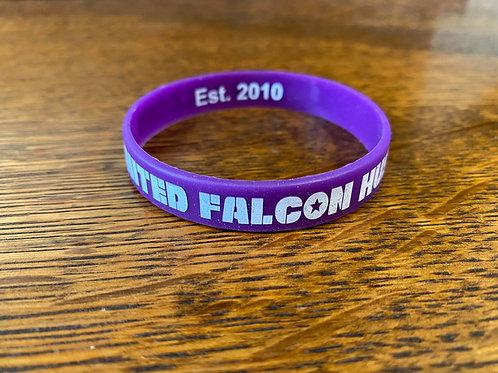 Falcon Pride Silicon Wristband