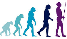 Evolution%2001_edited.jpg